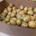 Homemade Frozen Potato Hashbrown Recipe