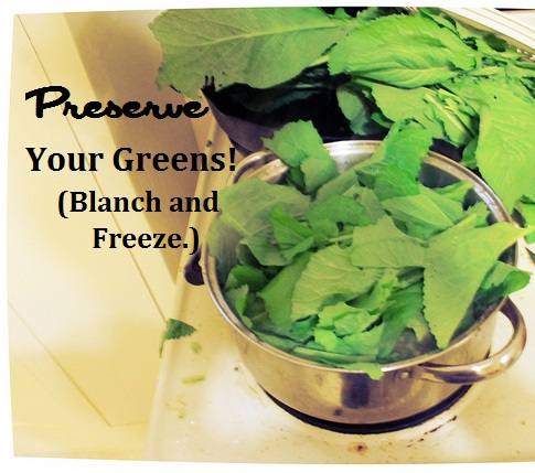Preserve Your GreensBlanch and Freeze by WaterPenny